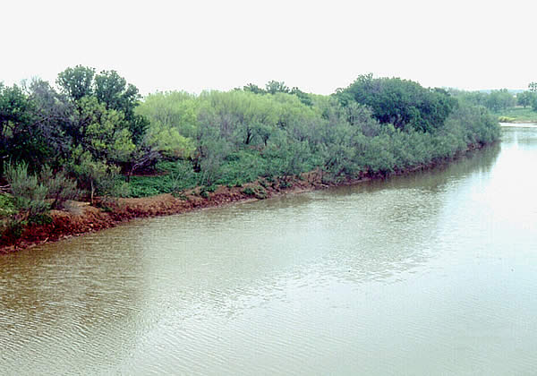 The harrell site for Brazos river fishing