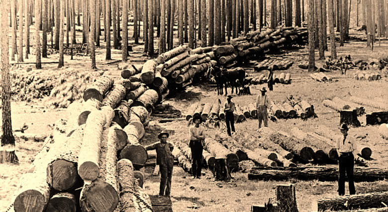 Aldridge Sawmill Gt Logging In The Piney Woods