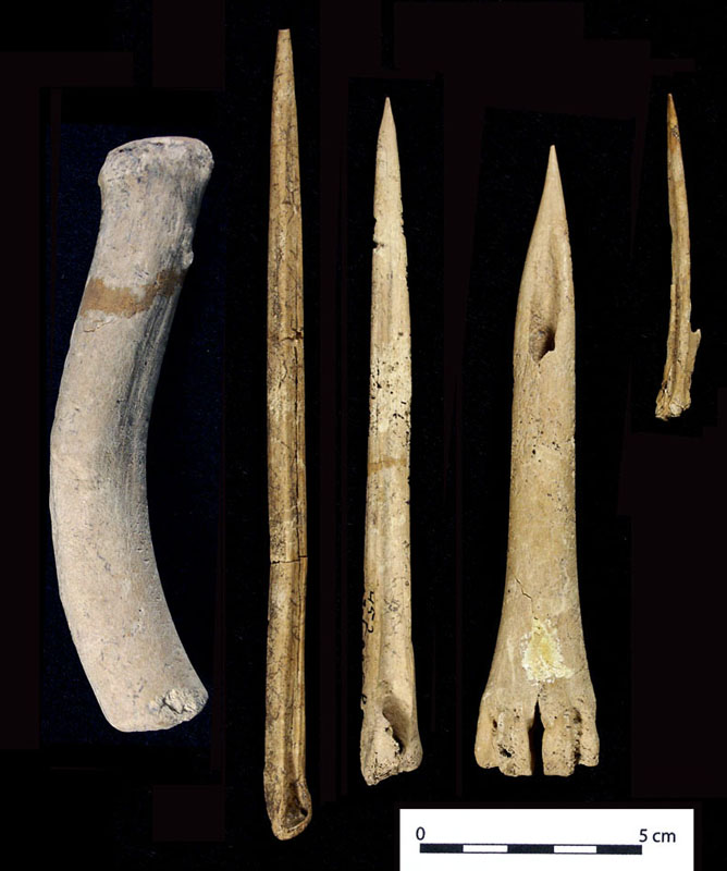 Stone tools made by early man